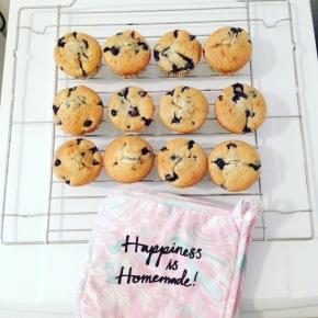 Easy Blueberry-Vanilla Muffins mit All-InTeig